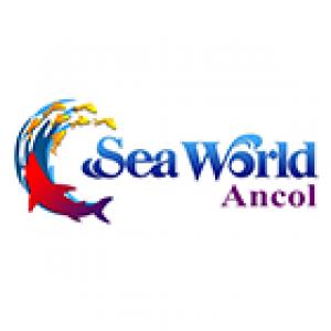 Promo Diskon SeaWorld Ancol